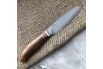 Булатный кухонный нож Сантоку Малый (кавказский горный орех)