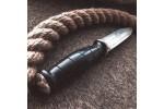 Булатный нож T006 Пегас спец.серия